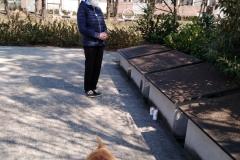 Pani Zofia Chorzempa pod pomnikiem ofiar Katynia 10. 4. 2020